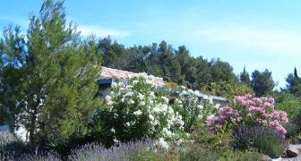 Tuin en natuur